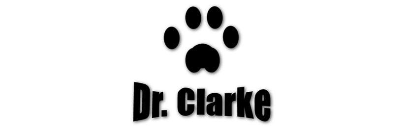 Dr Clarke