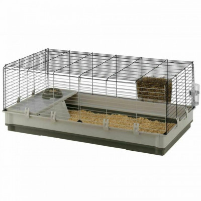 Cages/Clapiers Lapin